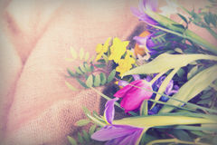 Spring flower arrangement against a rustic background Royalty Free Stock Photos