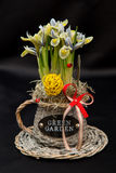 Spring flower arrangements Stock Photo