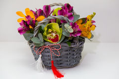 Spring flower arrangements Royalty Free Stock Image