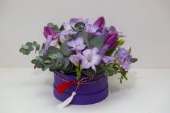 Spring flower arrangements Royalty Free Stock Images