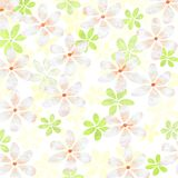 Spring flower background. Fresh, Spring flower design on white background Royalty Free Stock Photography