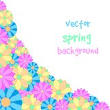 Spring flower background. Vector illustration of a spring flower background Stock Image