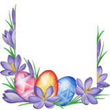 Spring flower banner of crocuses and easter eggs. Watercolor Background Stock Photos