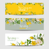 Spring Flower Banner Set. In vector Royalty Free Stock Images