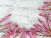 Free Spring Flower Border And Frame On Wood Background Stock Photo - 66809730