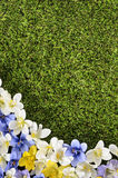 Spring flower border background, grass copy space, vertical Stock Images