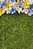 Spring flower border background, grass copy space, vertical Royalty Free Stock Image