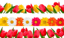 Spring flower borders. Vector. Royalty Free Stock Images