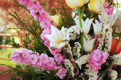 Spring flower bouquet. Beautiful white and pink spring flower bouquet Stock Photography