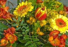 Spring flower bouquet closeup Royalty Free Stock Photos