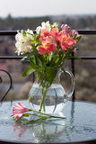 Spring flower bouquet in glass jug on table Royalty Free Stock Image
