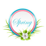 Spring flower and card. With grass isolated on white background, illustration Royalty Free Stock Image