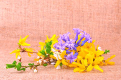 Spring flower composition on sackcloth Stock Photography