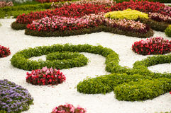 Spring flower garden background Royalty Free Stock Images