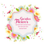 Spring flower garden card Royalty Free Stock Images