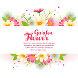 Spring flower garden Royalty Free Stock Images