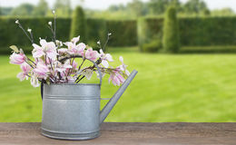 Spring flower garden still life. stock photos