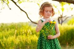 Spring flower girl. Little blonde girl in green polka dot dress holding flowers with yellow blooms standing under branch of tree in golden landscape Royalty Free Stock Image