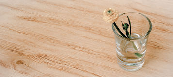 Spring flower in glass on a wooden table background with banner add. Vintage style. Toning image. Three spring or summer flowers in glasses on a wooden table Stock Images