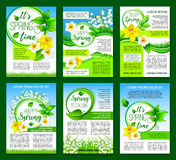 Spring flower, green leaf poster template design. Happy springtime greeting poster template with spring flowers. Green leaf floral frame with narcissus, lily of vector illustration