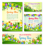 Spring flower greeting card and banner template Stock Photos