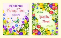 Spring flower greeting card with floral background. Spring floral greeting card set. Spring flower meadow of blooming tulip, narcissus, lily of the valley Royalty Free Stock Image