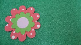 Spring flower icon on green background stock image