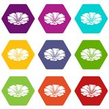 Spring flower icons set 9 vector. Spring flower icons 9 set coloful isolated on white for web Royalty Free Stock Images