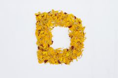 Spring Flower Letter concept of Marigold petal. Marigold petal alphabet isolated on white background. Letter D concept Logo. Spring Flower Letter concept of royalty free stock photo