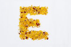 Spring Flower Letter concept of Marigold petal. Marigold petal alphabet isolated on white background. Letter E concept Logo. Spring Flower Letter concept of royalty free stock images