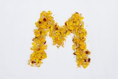 Spring Flower Letter concept of Marigold petal. Marigold petal alphabet isolated on white background. Letter M concept Logo. Spring Flower Letter concept of stock photos