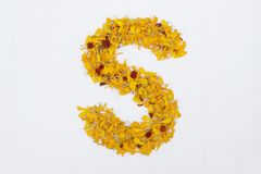Spring Flower Letter concept of Marigold petal. Marigold petal alphabet isolated on white background. Letter S concept Logo. Spring Flower Letter concept of royalty free stock images