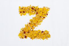 Spring Flower Letter concept of Marigold petal. Marigold petal alphabet isolated on white background. Letter Z concept Logo. Spring Flower Letter concept of royalty free stock photo