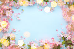 Spring flower with lights Royalty Free Stock Images