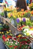 Spring flower market Royalty Free Stock Photo