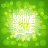 Spring flower sale design background Stock Photography