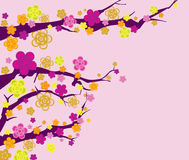 Spring flower seamless pattern in pink background Royalty Free Stock Photos