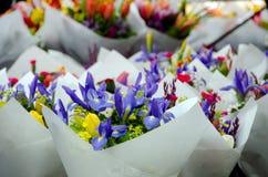 Spring flower season at Redmond farmer market Royalty Free Stock Photos