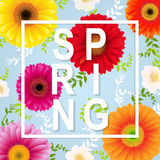 Spring Flower Spring Banner. With Gradient Mesh, Vector Illustration Stock Photos