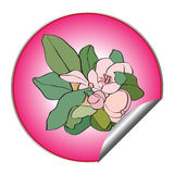 Spring flower sticker Royalty Free Stock Photos