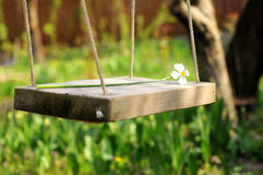 Spring Flower Swinging Stock Photography
