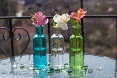 Spring flower in three glass bottles on table Royalty Free Stock Photos