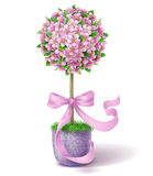 Spring Flower Topiary Stock Image