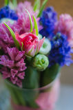 Spring flower tulip in bouquet macro soft Stock Photo