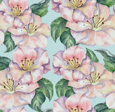 Spring flower, watercolor , pattern seamless Stock Images