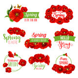 Spring flower wreath icon for springtime design. Spring flower wreath icon set. Floral frame border of red poppy flowers, green leaf and branch, decorated by Stock Image