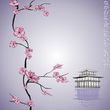 Spring flowering branch Royalty Free Stock Photo