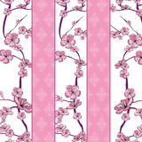 Spring flowering branch pattern. On strip background Stock Photography