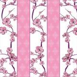 Spring flowering branch pattern Stock Photography
