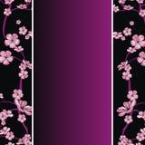 Spring flowering branch pattern. Seamless spring flowering branch pattern on strip background Royalty Free Stock Photos